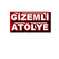 Istanbul tavuk alım satım